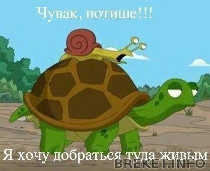 Скоростные мои))))