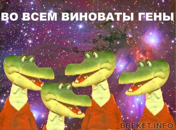 200642_1_1346742421.jpg